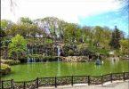 Emirgan Park / Emirgan Korusu 25
