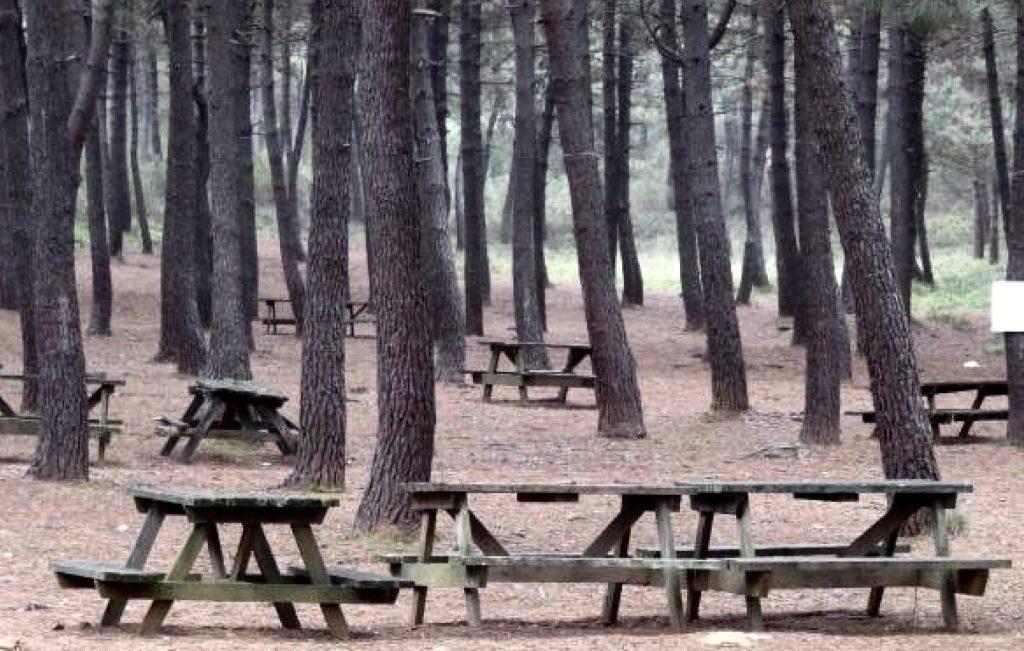 Aydos Wald Istanbul